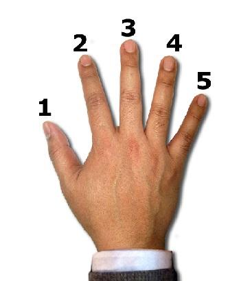 آموزش کیبورد مبتدی تا حرفه ای جلسه دوم نام گذاری انگشتان دست راست